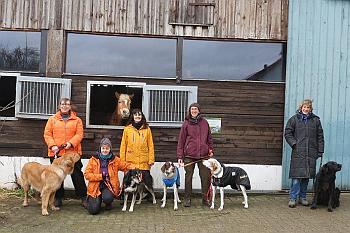 Dog & Horse 1