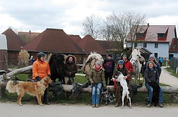 Dog & Horse 2